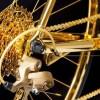 goldgenie golden racing bike